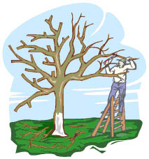 Tree Clip Art Maintenance