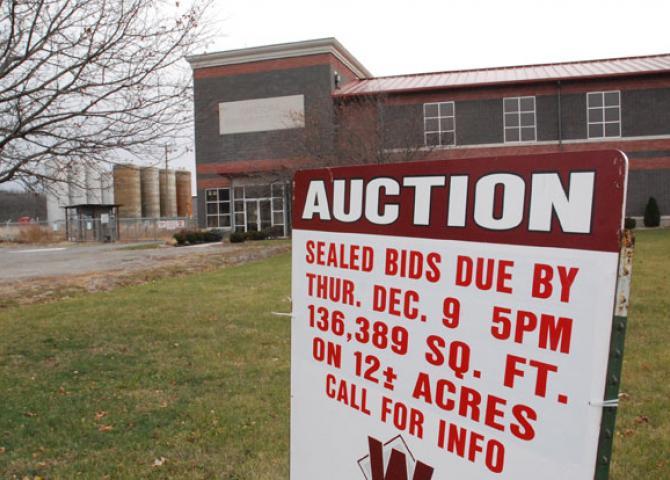 Pandora plant up for auction