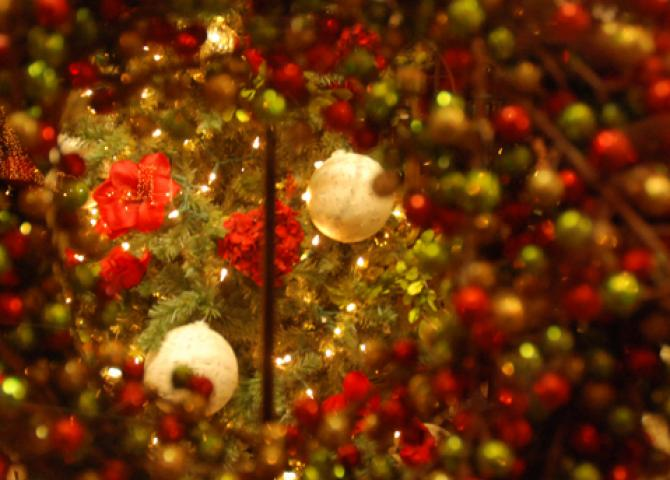 """Little Red Barn's """"red"""" Christmas window"""