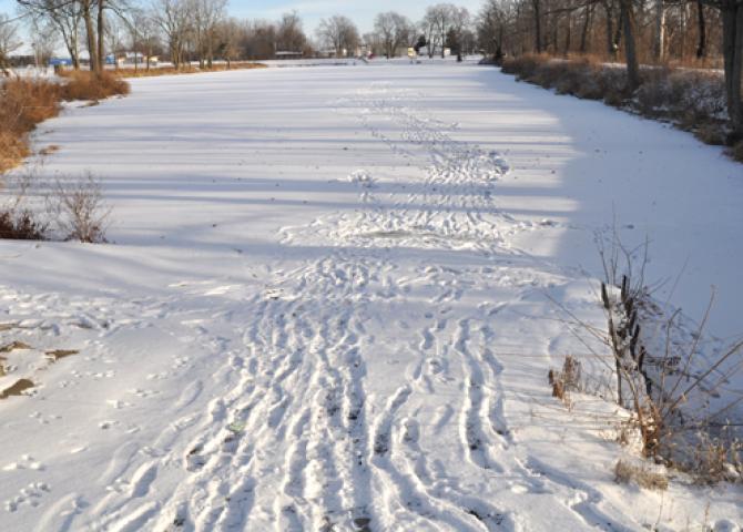 Walking on frozen water