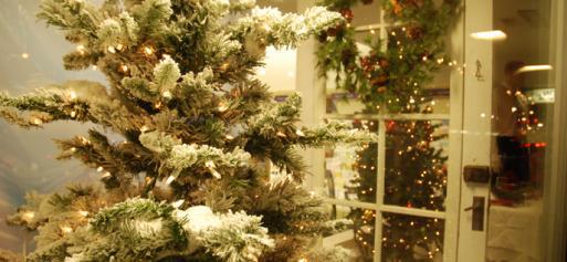 White Christmas at Greg's Pharmacy