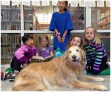Ένα σκύλος στη βιβλιοθήκη...