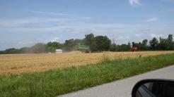 2018 Bluffton wheat harvest