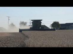 2017 soybean harvest, 10 20 17